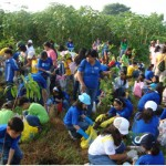 Saint Bridget College Tree Planting