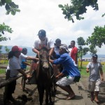 Horse Ride for Php 450