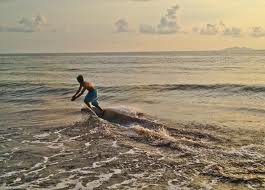 skimboarding - activity to do in Nasugbu