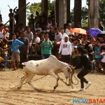 kabakahan festival 2012