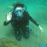 Scuba Diving at Sea's Spring Resort