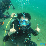 Diving at Sea's Spring Anilao