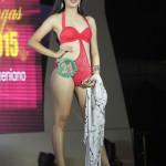 Mutya ng Batangas 2015 Grand Coronation Night (107)