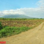 Mt Malarayat 9